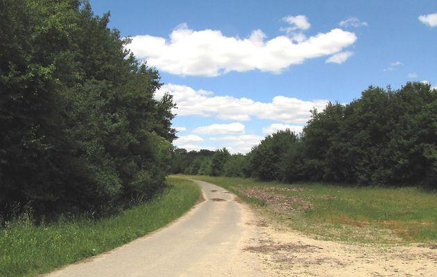 carrefour_Route des Beaux Monts_Route du Maréchal Foch