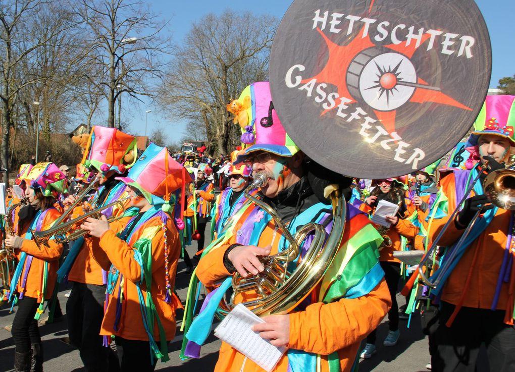 Album - Veitshöchheimer Rosenmontagszug2011