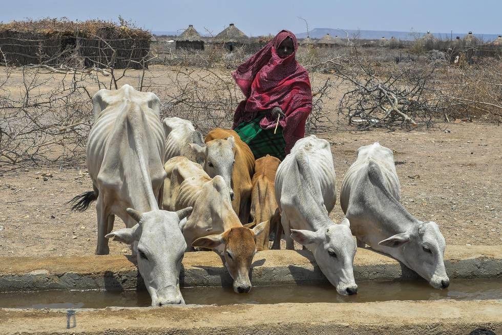 Imágenes de Etiopía.- El Muni.