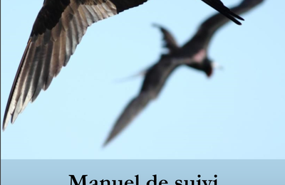 L'important manuel de suivi des oiseaux marins publié par Birds Caribbean en 2014 (Haynes-Sutton, A.M et al.) est enfin traduit en Français !