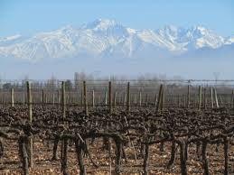 The Region of Mandoza and Vine