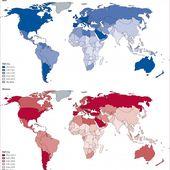Surpoids et obésité : 500.000 nouveaux cas de cancers par an dans le monde