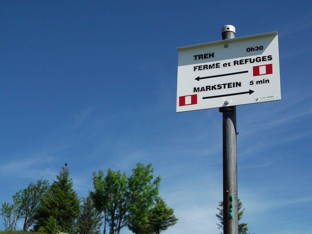 LE MARKSTEIN : BALADE SUR LES CHAUMES ET AUTOUR DU TREHKOPF (R 429) - 7,4 km - D+ 188 m - 2 h 15 mn - 2/6