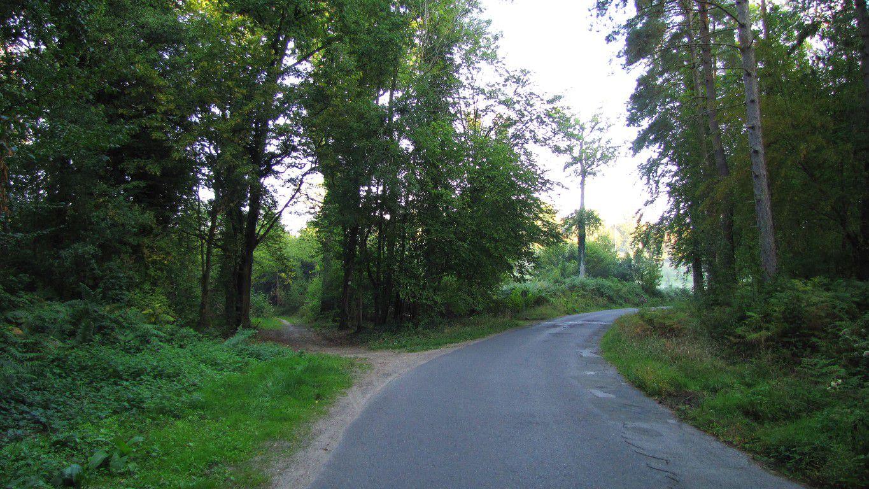carrefour_Chemin de la Voie d'Eau_Sentier (parcelle 179)