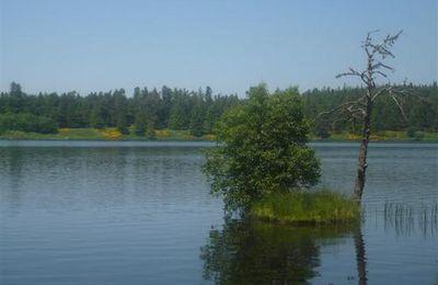 Eté: le lac de Servières