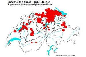 Les tiques en Suisse, une piqûre, que faire