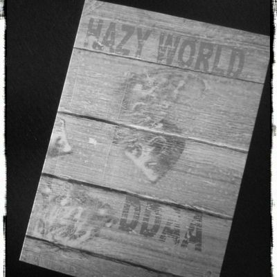 "DDAA ""hazy world"" cd"