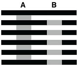 deux bandes du même gri sont traversée par des traits noirs au dessus et en dessous.