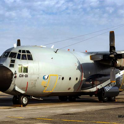 "Lockheed C-130H""Hercules"" - Luchtcomponent - 15th Air Transport Wing ""Sioux"" - 20th squadron - 50 years of service"