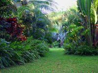 """crédit photos / site camille Muller et direction de l'hôtel 2014  """"« Dans une oasis, on n'a rien, mais on ne manque de rien.  » de Achille Tournier"""