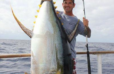 Pêcher le Thon (2/5) : Les différentes espèces de thons