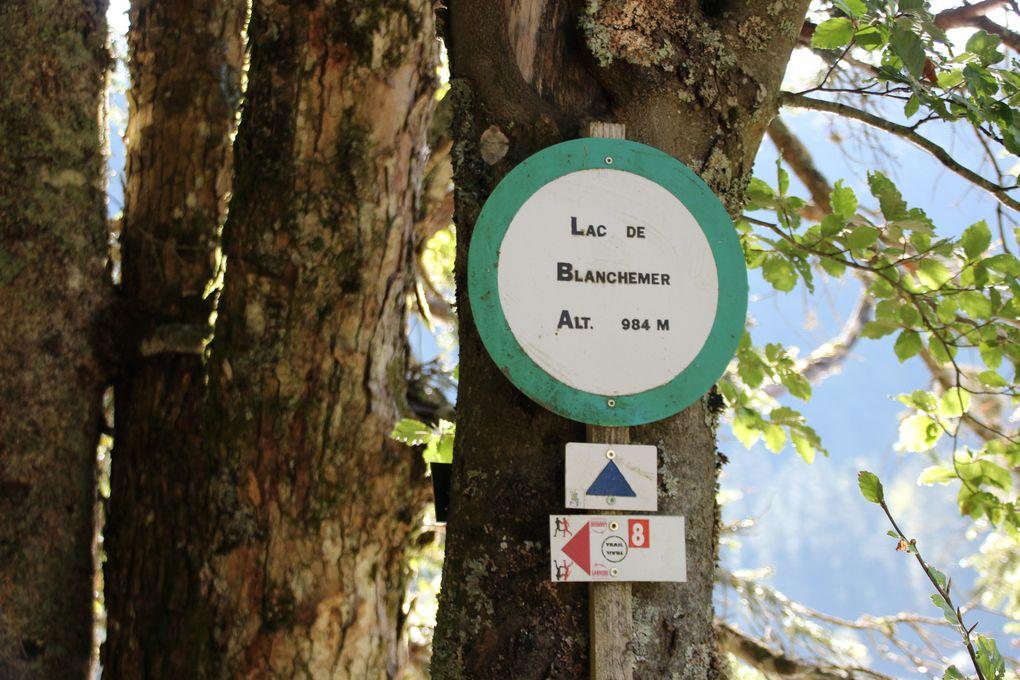 Lac de Blanchemer Et lac de la Lande