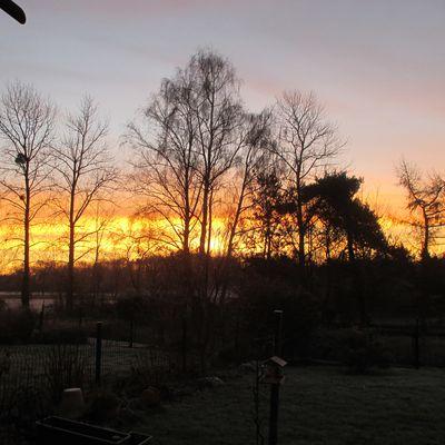 pour vous souhaiter de bonnes fêtes de fin d année....moins six au lever du soleil ce matin une aube givrée et un ciel nacré .joli ! non