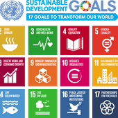#17goals17days: Progress made on Global Goals
