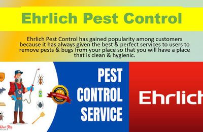 Choose Ehrlich Pest Control to remove Pests and Bugs Permanently