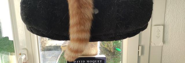 CAVITE de David Moquet