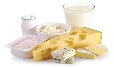 Dairy Starter Culture Market Insights | Opportunities & Future Scope | Forecast To 2028
