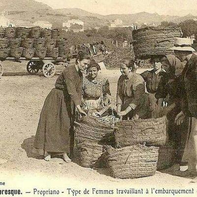 Femmes Corse travaillant à l embarquement des écorces