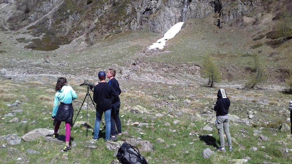 Sortie environnement pour les internes dans le Parc National des Ecrins.