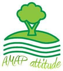 AMAP Attitude