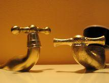 Patinage artistique. Les gastéropodes des ateliers Borgniol conservent leur titre européen.