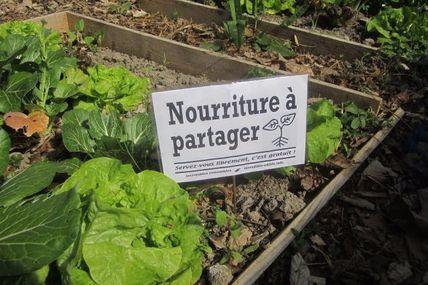 Le futur incroyable comestible, des potagers aux fermes urbaines, faire pousser légumes, fruits, et partages.