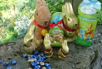 La chasse aux lapins... en chocolat !