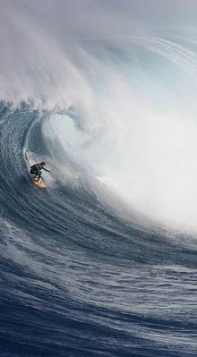 La nouvelle vague, avec Matt Meola