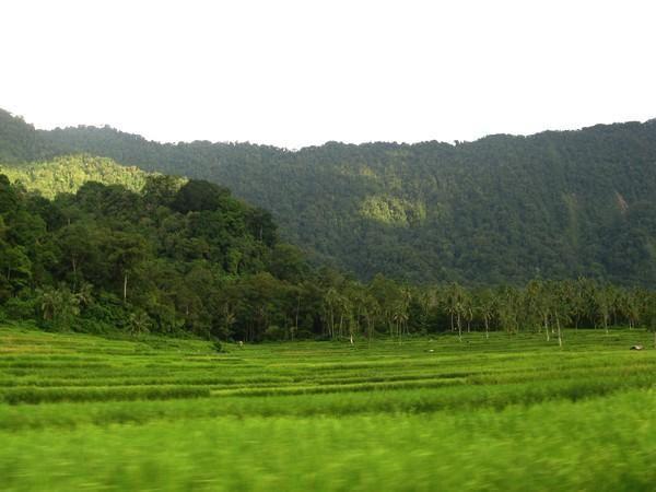 Album - 10 - Bukittinggi Octobre 2008