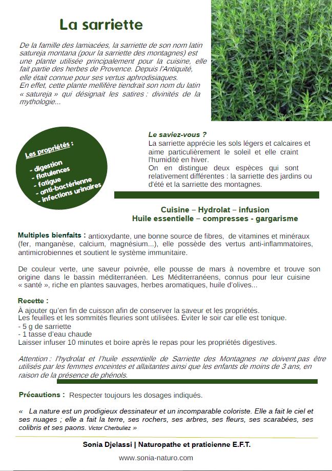 La plante du mois : la sarriette