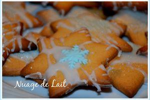 """Etoiles de Noël """"biscuits Gingembre Cardamome"""" et décorations"""