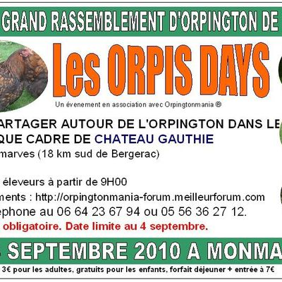 Les ORPIS DAYS, le plus grand rassemblement français d'orpingtons !