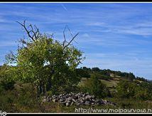 Le site de Chadecol (Haute Loire) La mort et la vie ...