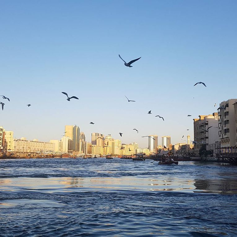 Le Dubai historique le long du Creek