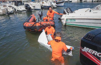 Marseille (13) - Les marins-pompiers appelés pour un dauphin coincé au port