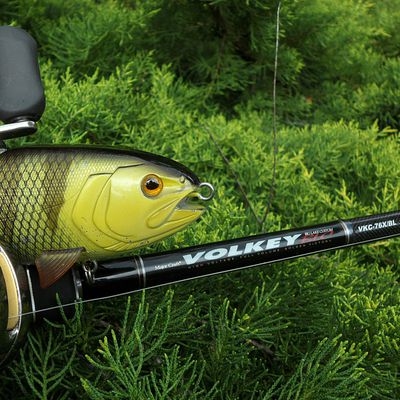 Power-fishing34