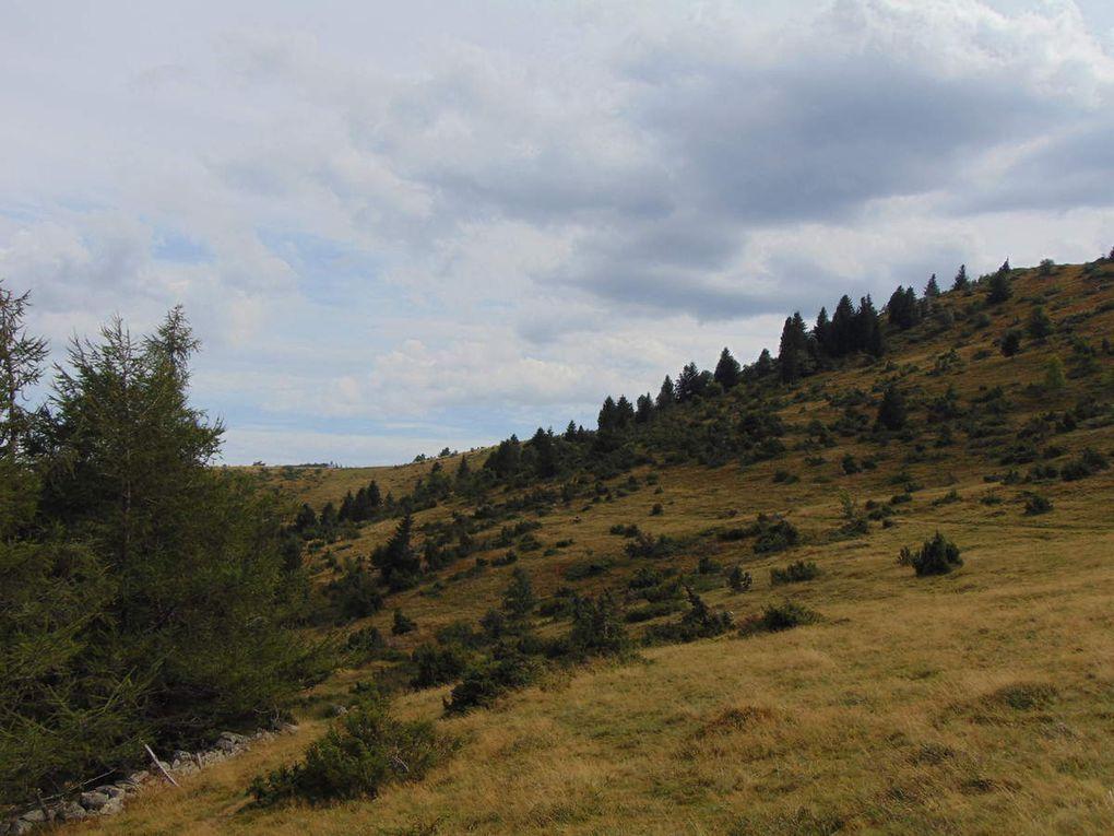 A partir du Schoenenklang, où les ruines d'une ancienne ferme sont encore visibles, le versant est du Steinberg, devient plus sauvage. Les sapins et les genévriers reprennent leurs droits sur les chaumes.