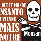 Monsanto, les OGM et les assassins - Le Kiosque aux Canards