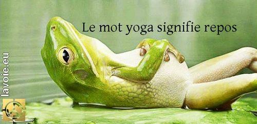 Texte de sri hans Yoganand ji sur la spiritualité, l'origine du mot yoga, sur La Voie et la conscience.
