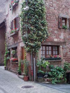 maisons et rues fleuries