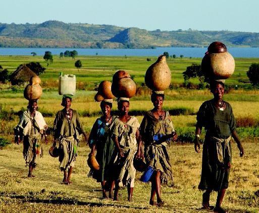 El campo africano: con el bebé bien sujeto a la espalda de su madre, los productos agrícolas llegan a la mesa en África gracias a la mujer.- El Muni.