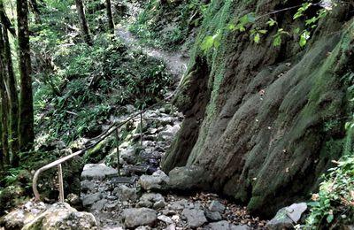 34 – Lods – Mouthier-Haute-Pierre – Vallée de la Loue – Ouhans : 27 km (875 km)