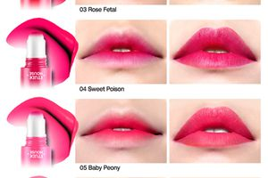 Review: Etude House Rosy Tint Lips