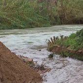 Inondations dans les Alpes-Maritimes : la commune de Pégomas couverte de boue - Le journal de 13h | TF1