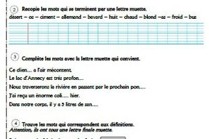 Exercices lettres muettes CM1