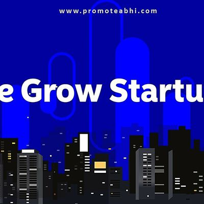 5 Things You Need to Know About Growing Startups