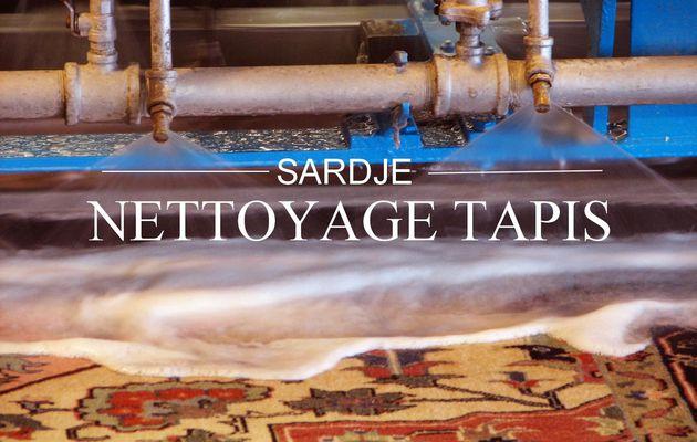 Nettoyage de Tapis à Mougins : Tél 06 28 77 54 25