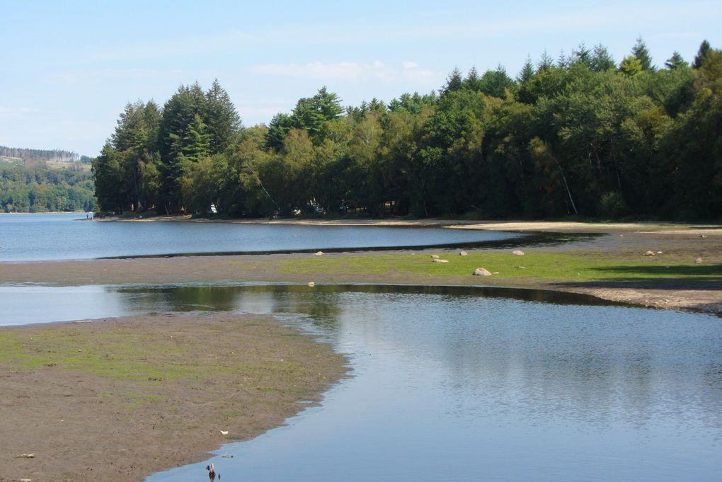 Au lac des Settons ( Morvan ), il n'y a pas de thon, mais beaucoup d'autres poissons.