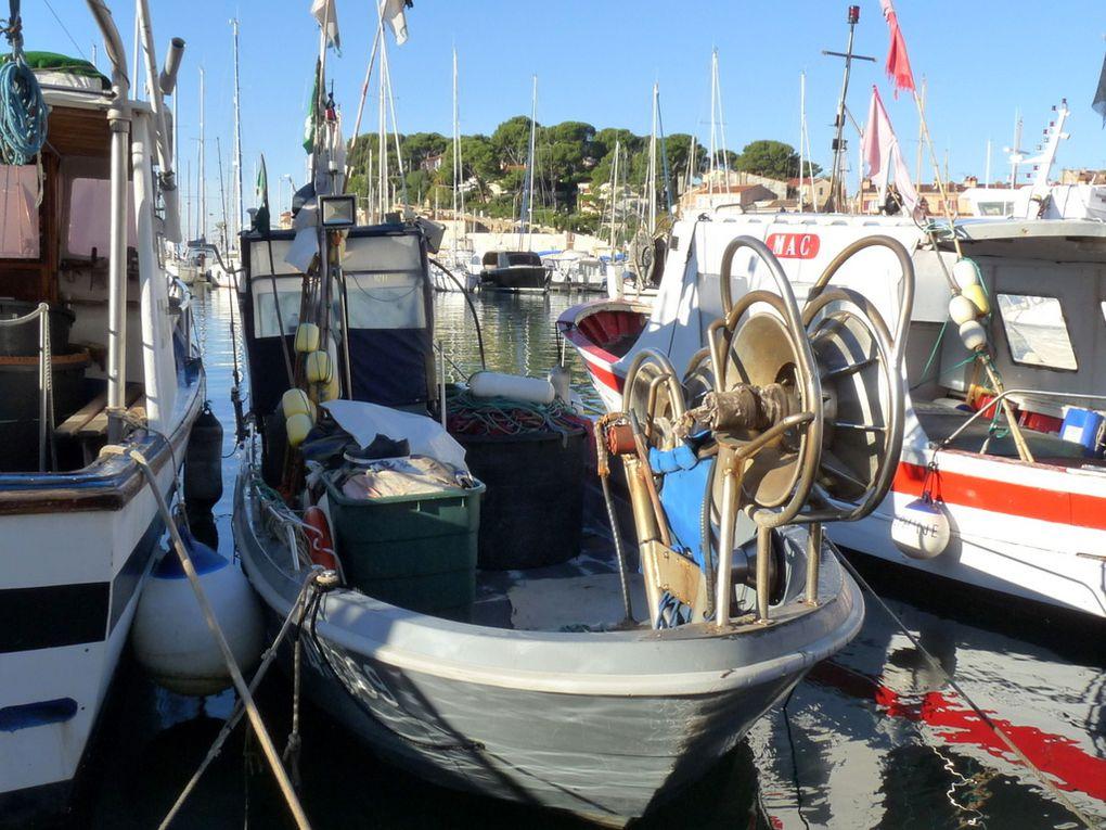 FIDO  TL418869 , a quai dans le port de Sanary sur Mer le 16 octobre 2016