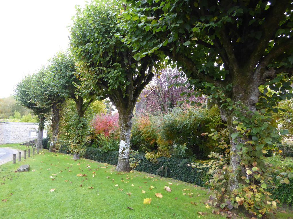 Randonnée de Cesson à Savigny-le-Temple 18 km.